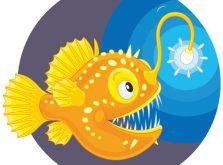海洋深層水は深海