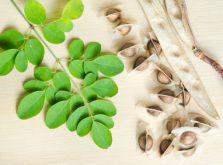 モリンガの葉と種子